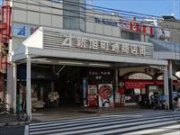 shinasahizentai2